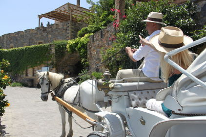 Carriage_ride